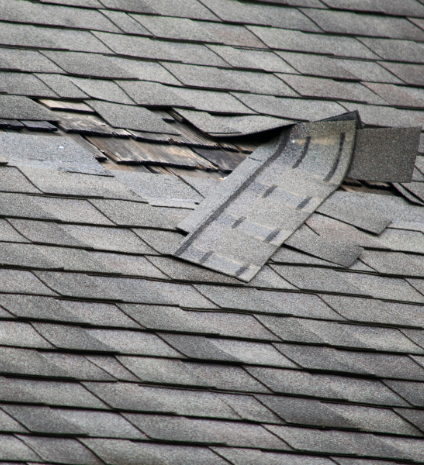 Roof Repair - Spotting Roofing Damage